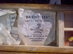 Dauntless casts