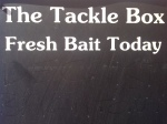 The Tackle Box, Brighton Marina