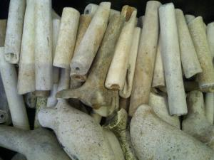 Clay pipes from the shores of the River Thames near the South Bank