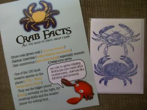 Crab facts...