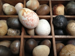 Ceramic eggs by Anon found in the tidal Thames