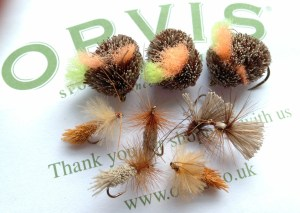 Dog biscuits and sedges from Orvis in Stockbridge