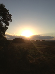 Autumn sunset in Lower Froyle,  Hampshire.